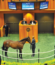 5: Save the date July 19 -- Opening day of the six-week thoroughbred meet at Saratoga Race Course, the region's largest sporting event. Aug. 5 and 6 -- Fasig-Tipton yearling sales. Last year's sale generated $8.6 million, a 28 percent increase from 2011. The auction is the premiere boutique yearling sale for the racing industry. Aug. 24 -- The Travers Stakes. The competition for 3 year olds, with a purse of $1 million, is the highlight race of the meet.  This colt sold for $1.1 million last year to California investment banker George Bolton.