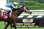 150th anniversary of thoroughbred racing in Saratoga Springs