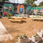 <strong>Austin</strong> cat café sets opening date
