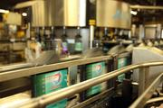 High-speed production line with bottles of Amalie oil flying by.