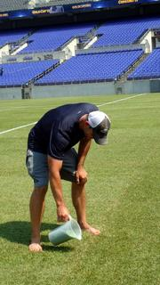 "A roughly $100,000 natural grass ""pitch"" has been placed above M&T Bank Stadium's turf field for Sunday's CONCACAF Gold Cup soccer games. Above, Sean Kauffman, a Ravens groundskeeper, applies sand to natural turf on Friday to fill in some soft spots."