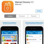 Walmart to offer online grocery shopping in Tampa