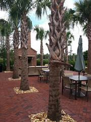 The palm court at RiverTown, which includes a fire pit and umbrellas.
