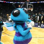 Local bars, restaurants see business spike from Hornets' playoff run (PHOTOS)