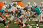 Miami Dolphins' practices intensify as the pads go on