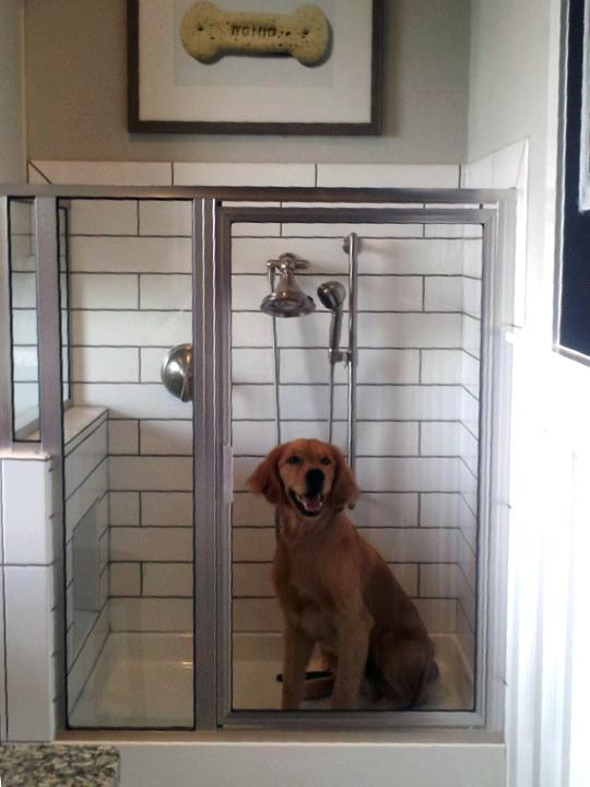 inside garage color ideas - Toll Brothers Inc debuts new dog shower for Houston s