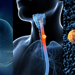 Local biotech rebrands, aims to test esophagus regeneration in humans next year