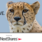Eaton Vance forced to delay NextShares rollout until 2016