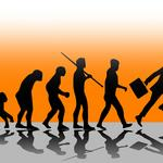 Evolution of the CFO