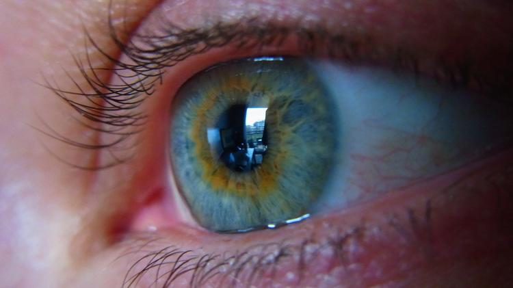 Beth Israel Deaconess targets new treatment for vision loss News