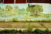 "A ""Bob Ross happy little tree"" graces a mural on the wall of one of the buildings of the former Westborough State Hospital. Weeds have taken over much of not only the grounds of the former Westborough State Hospital but as shown here, the building roofs and chimneys."