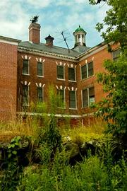 Weeds have taken over much of not only the grounds of the former Westborough State Hospital but as shown here, the building roofs and chimneys.