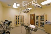 The surgical suite at DoveLewis Emergency Animal Hospital.