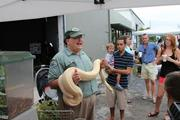 Marc Caruhel, museum curator at Hugh Taylor Birch State Park, holds a 35-pound snow boa constrictor from Colombia. The exhibit helped highlight invasive species in Florida.