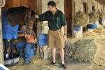 <strong>Rick</strong> Pitino's plan to save horse racing