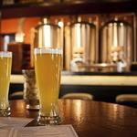 Drink up: Number of U.S. breweries reaches all-time high