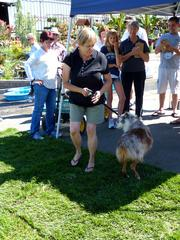 Dogs are always welcome at Green Acres nurseries, but pets are especially welcome during the Dog Days of Summer event Saturday. Green Acres will host animal shelters and rescue organizations offering animals for adoption, and the nursery also highlights pet-friendly products and will give discounts to customers accompanied by their canine family members.