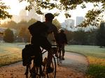 More from Charlotte City Council:<br>City grows tree canopy program