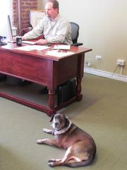 Jeremy and Daisy at Dovetail Solutions.