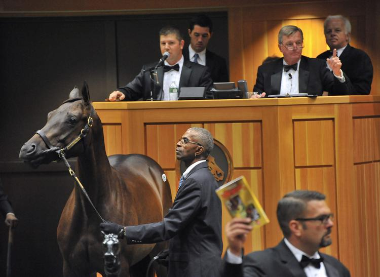 Saratoga is a boutique auction, with just 150 horses up for sale at Fasig-Tipton.