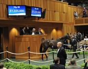 The Borges Torrealba family of Brazil, bought the most expensive horse of the auction so far, spending $1.225 million.