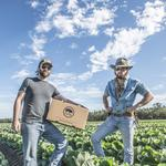 Black Hog Farm grows much less produce than you might think