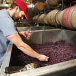 At Novelty Hill, winemaking is a team sport