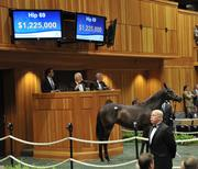 The Borges Torrealba family of Brazil purchased the most expensive yearling for $1,225,000.