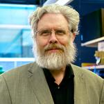 Gene editing, plastic surgery and woolly mammoths: My 20 minutes with George Church