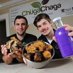 This Albany startup is raising money to bring its tea made with mushrooms to market