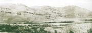 This picture was taken from Keystone Ranch in 1890. Note the pronounced lack of juniper.
