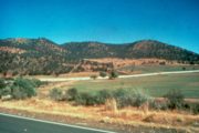 The same Keystone Ranch area, in 1989. Juniper now overruns the hills in the background.