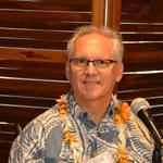 NextEra Energy-Hawaiian Electric deal not acceptable as it stands, state energy chief says