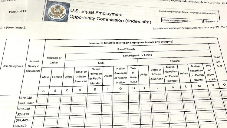 EEOC's regulation requiring employers to report pay by sex