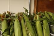 Fresh corn sits in baskets on the Honeybee Mobile Market trailer.