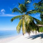 What Florida businesses need to know about summer workplace safety