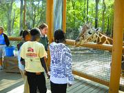 Birmingham Zoo, Inc. Nonprofit category  10-word philosophy on community service: Take care of each other and together we will grow  Click here to read their profile   Caption: The Birmingham Zoo opened the Kiwanis Giraffe Encounter in 2012, among other projects.