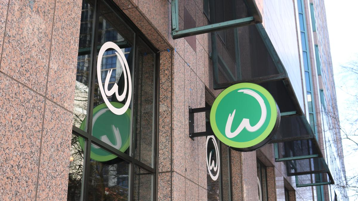wahlburgers blue bird bake shop among 50 eateries in main street