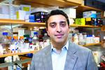 Champions in Health Care: Harvard's <strong>Omid</strong> <strong>Farokhzad</strong>