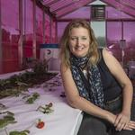 UCSC Professor Sue Carter: How to turn science into business
