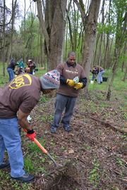 UPS employees participated in a corporate effort to plant 1 million trees in places around the world and 500 locally.