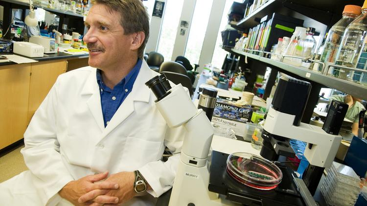 Dr. Charles Murry in his research lab at the UW Medicine South Lake Union campus. The University of Washington is the largest recipient of NIH funding in the state.