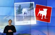 """Zynga (CEO Mark PIncus shown) """"This all goes back to hiring well and trusting your employees to make good decision with their time,"""" said Zynga Chief People Officer Colleen McCreary. """"Whereas we always feel that face-to-face interactions provide the best opportunity for engagement, it's not practical or realistic to require that every day. ...Obviously there are some employees and roles that need the structure of an office environment to do their best work, but that should be decided on a case-by-case basis."""""""