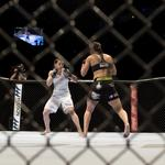 <strong>Walter</strong> helps in fight to legalize MMA in New York