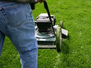 Robin has developed on online system to allow customers to automate their lawn care service.