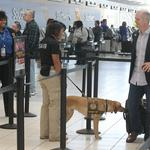 Sen. <strong>Markey</strong> has a fix for the long lines at the airport