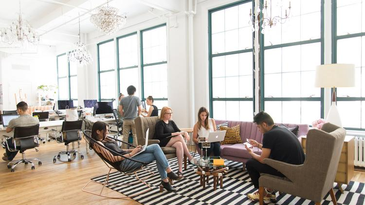 sleek n y c startup with a scrappy team new york business journal