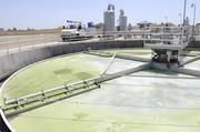Algae is removed from the water by a dissolved air filtration system at the Lincoln Wastewater Treatment and Reclamation Facility.