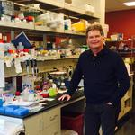 Ironwood to decide soon on a target disease for its next potential blockbuster