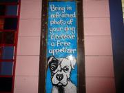 Want a free appetizer? Just bring in a framed photo of your dog to hang in Chuy's bar.
